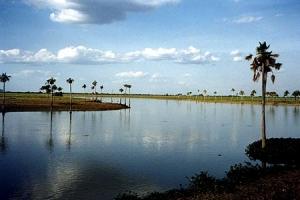 El Hato Piñero es una reserva eco-turística que todo venezolano debería visitar