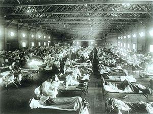 La gripe española produjo tres veces la cantidad de pérdidas humanas causadas por la 1ra guerra mundial, comparable con la 2da guerra mundial.
