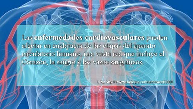 enfermedades cardiovasculares  cardiopat u00edas   u2013 venelog u00eda