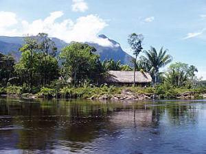 Parque Nacional Duida-Marahuaca. Estado Amazonas