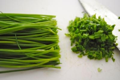 Propiedades y beneficios del ceboll n venelog a for Se puede cocer el pulpo congelado