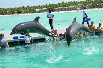 Actividades especiales, nado con delfines