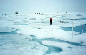 El Océano Ártico (Polo Norte) podría quedarse sin hielo dentro de 10 años