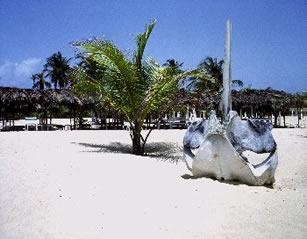Isla de Coche, La Restinga, Luna de miel en playa el agua, Paria